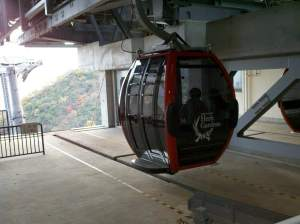 They call it a ropeway, but it's cables