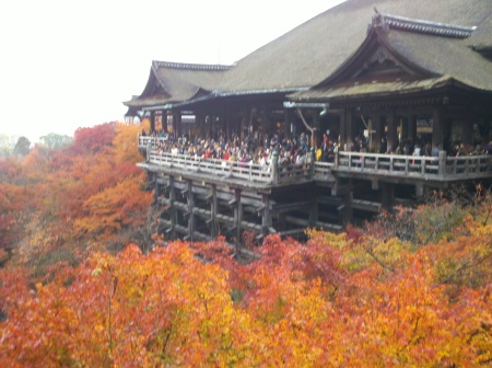 Leaf-peepers of Kyoto