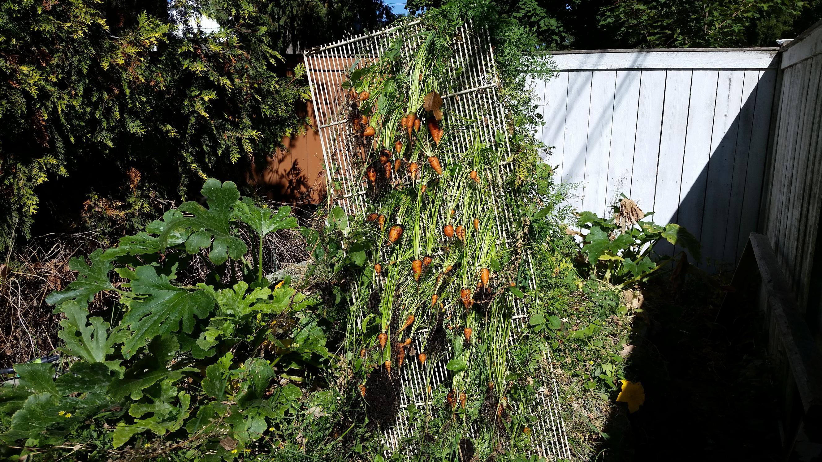 Gardening Foundonweb